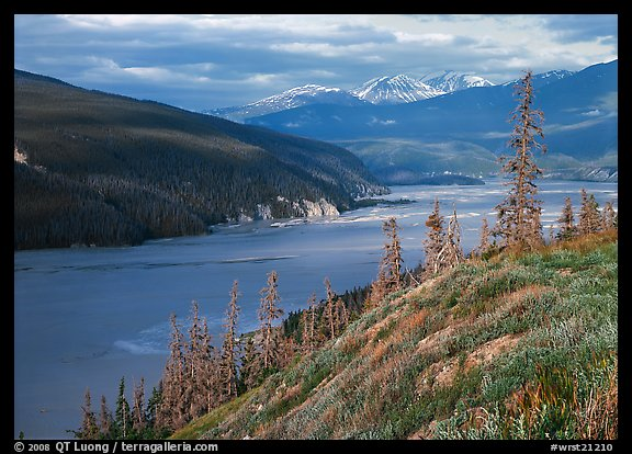 Wide Chitina river. Wrangell-St Elias National Park (color)