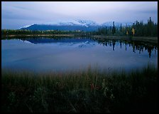 Pond with mountain reflections at dusk, near Chokosna. Wrangell-St Elias National Park ( color)