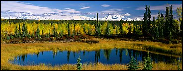 Autumn landscape with pond, forest, and distant mountains. Wrangell-St Elias National Park (Panoramic color)