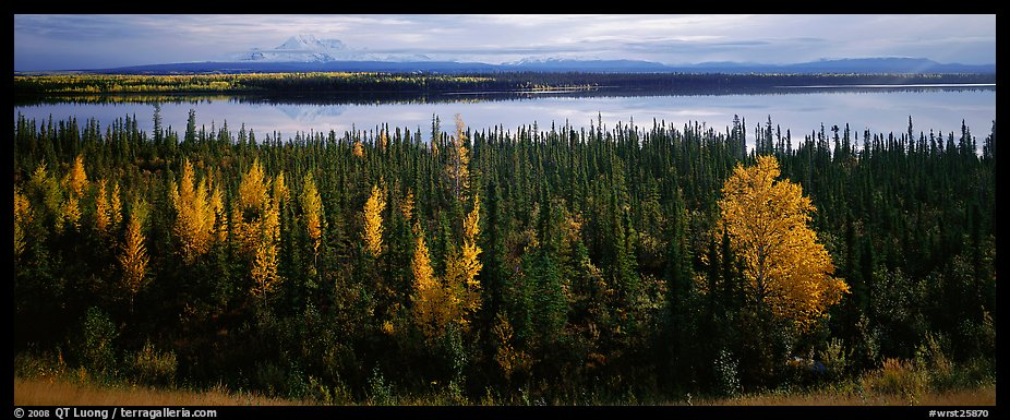 Autumn scenery with forest, lake, and distant mountains. Wrangell-St Elias National Park (color)