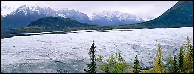 Wide mountain glacier. Wrangell-St Elias National Park (Panoramic color)