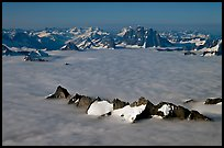 Aerial view of peaks emerging from sea of clouds, St Elias range. Wrangell-St Elias National Park, Alaska, USA. (color)