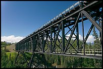 Bridge over Kuskulana river. Wrangell-St Elias National Park, Alaska, USA. (color)