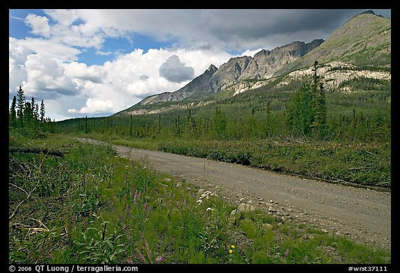 McCarthy road and mountains. Wrangell-St Elias National Park (color)
