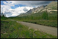 McCarthy road and mountains. Wrangell-St Elias National Park, Alaska, USA. (color)
