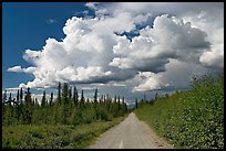 Mc Carthy road and afternoon thunderstorm clouds. Wrangell-St Elias National Park, Alaska, USA.