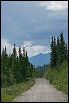 McCarthy road. Wrangell-St Elias National Park, Alaska, USA. (color)