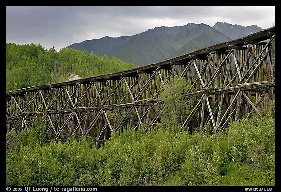 Historic Railroad trestle crossing valley. Wrangell-St Elias National Park, Alaska, USA.