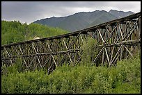 Historic Railroad trestle crossing valley. Wrangell-St Elias National Park, Alaska, USA. (color)