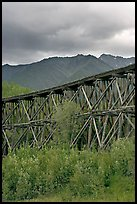 Historic CR and NW Gilahina trestle. Wrangell-St Elias National Park, Alaska, USA. (color)