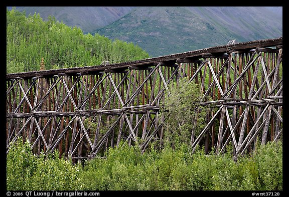 Section of Gilahina trestle constructed in 1911. Wrangell-St Elias National Park (color)