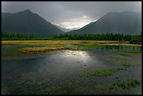Storm light on lake. Wrangell-St Elias National Park, Alaska, USA.