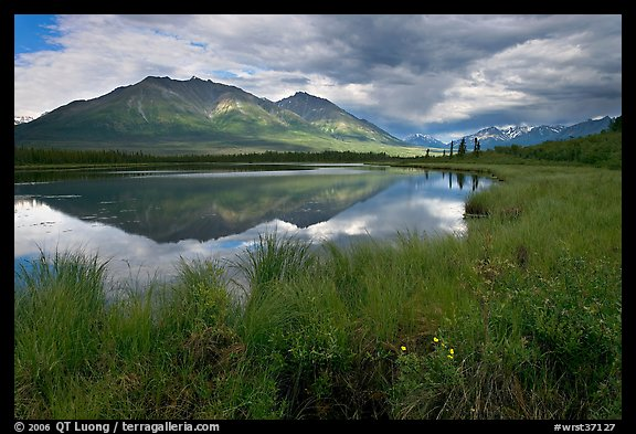 Grasses, lake, and mountains. Wrangell-St Elias National Park (color)
