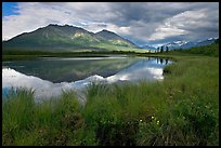 Grasses, lake, and mountains. Wrangell-St Elias National Park, Alaska, USA.