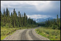 McCarthy road with vehicle approaching in the distance. Wrangell-St Elias National Park, Alaska, USA. (color)
