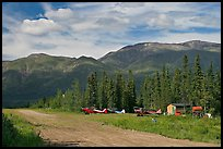 Airstrip and bush planes. Wrangell-St Elias National Park, Alaska, USA. (color)