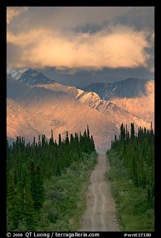 Road leading to mountains and clould lit by sunset light. Wrangell-St Elias National Park (color)