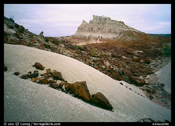 Low white mounds of compacted volcanic ash near Tuff Canyon. Big Bend National Park (color)