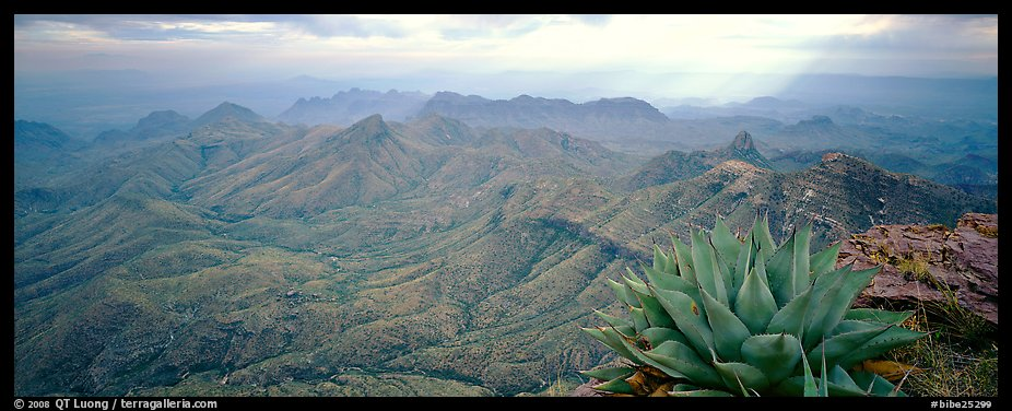 Century plant and desert mountains from South Rim. Big Bend National Park (color)