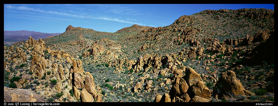 Valley strewn with rock boulders, Grapevine Mountains. Big Bend National Park (color)