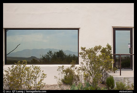 Shrubs, Chisos mountains, Persimmon Gap Visitor Center window reflexion. Big Bend National Park (color)