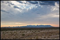 Dry riverbed, distant Chisos Mountains, and clouds. Big Bend National Park ( color)