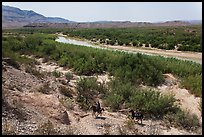 Mexican nationals crossing border on horse. Big Bend National Park, Texas, USA. (color)