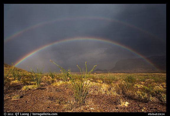Double rainbow over Chihuahuan desert. Big Bend National Park (color)