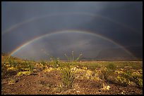 Double rainbow over Chihuahuan desert. Big Bend National Park, Texas, USA. (color)