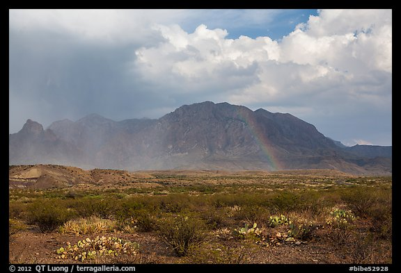 Clearing storm, rainbow, and Chisos Mountains. Big Bend National Park (color)