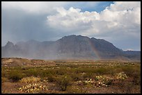 Clearing storm, rainbow, and Chisos Mountains. Big Bend National Park, Texas, USA. (color)