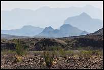 Desert and hazy Chisos Mountains. Big Bend National Park ( color)