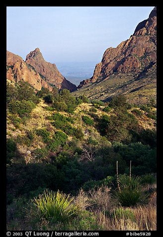The Window, a V-opening through Chisos Basin. Big Bend National Park (color)