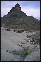 Volcanic tower near Tuff Canyon. Big Bend National Park, Texas, USA. (color)