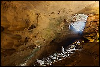 Large cave room and natural entrance. Carlsbad Caverns National Park ( color)