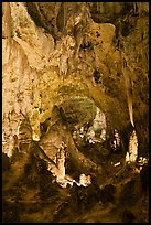 Massive speleotherms. Carlsbad Caverns National Park, New Mexico, USA. (color)