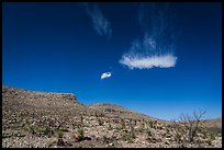 Cloud and blue skies above burned desert. Carlsbad Caverns National Park ( color)