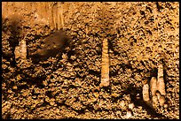 Stalagmite and cave popcorn. Carlsbad Caverns National Park ( color)