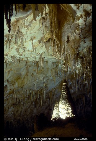 Delicate stalactites in Papoose Room. Carlsbad Caverns National Park (color)