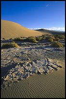 Mud formations in the Mesquite sand dunes, early morning. Death Valley National Park, California, USA. (color)
