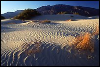 Mesquite Sand Dunes and Tucki mountain, early morning. Death Valley National Park, California, USA. (color)