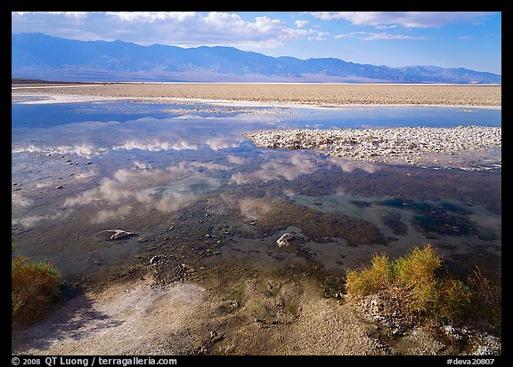 Shallow pond, reflections, and playa, Badwater. Death Valley National Park (color)