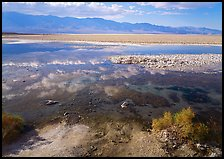 Shallow pond, reflections, and playa, Badwater. Death Valley National Park ( color)