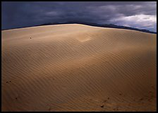 Dunes under rare stormy sky. Death Valley National Park, California, USA. (color)