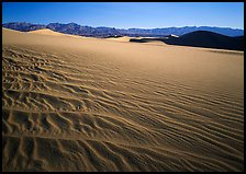 Ripples on Mesquite Dunes, early morning. Death Valley National Park, California, USA. (color)