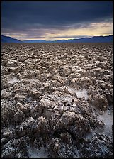 Salt pinnacles at Devils Golf Course. Death Valley National Park, California, USA. (color)