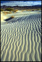Ripples on Mesquite Sand Dunes. Death Valley National Park, California, USA. (color)