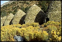 Charcoal Kilns near Wildrose. Death Valley National Park, California, USA. (color)