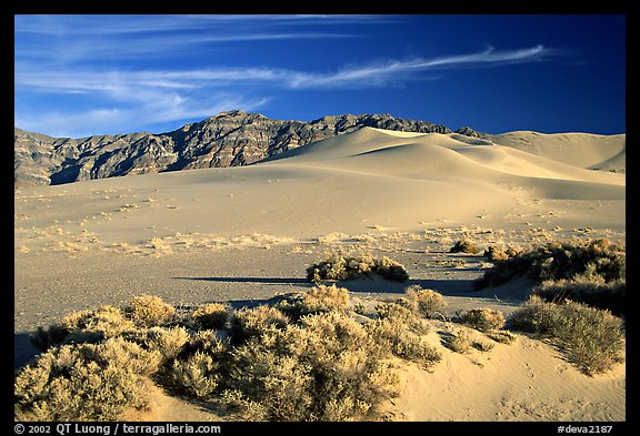 Eureka sand dunes, late afternoon. Death Valley National Park (color)