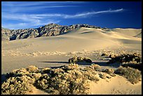 Eureka sand dunes, late afternoon. Death Valley National Park, California, USA.